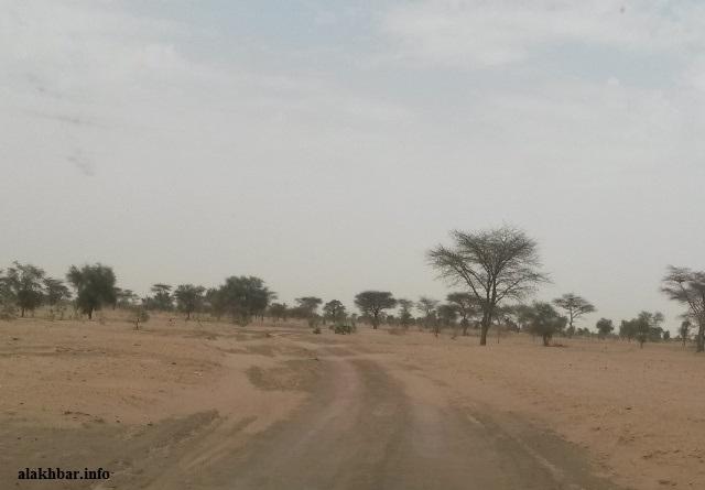 الطريق الرملي الرابط بين جكني وعوينات الزبل ـ (أرشيف الأخبار)