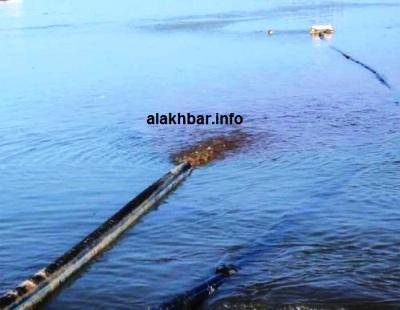 جانب من مخلفات مصانع دقيق السمك (تصوير الأخبار)