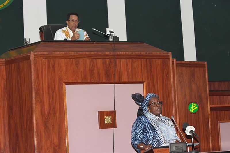 تانديا خلال تقديمها للقانون أمام النواب اليوم الثلاثاء (وما)