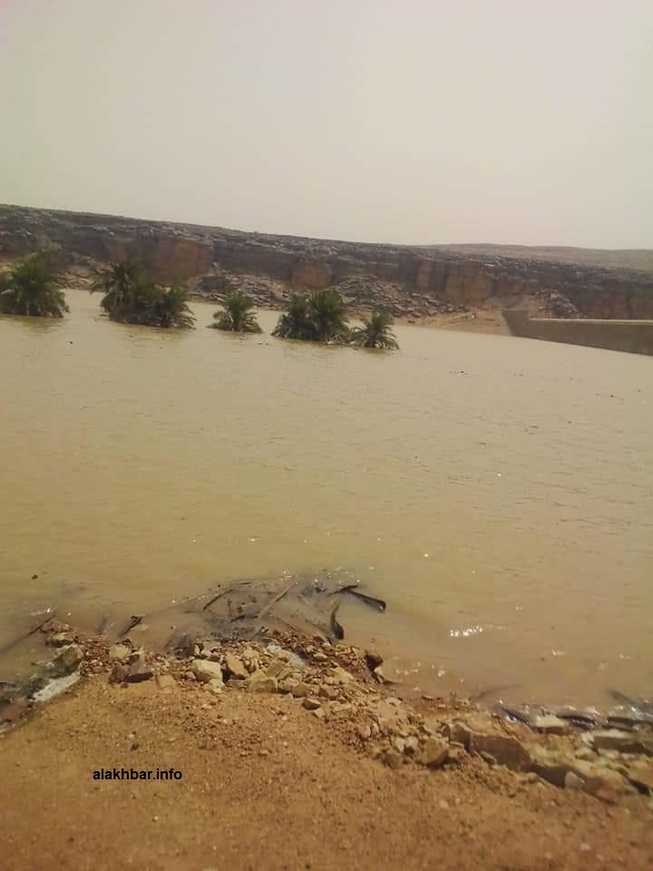 منظر لأحد جوانب السد في ولاية آدرار شمال البلاد