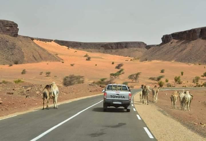 صورة استخدمها أحد المدونين في الحملة الداعمة للموسم السياحي الموريتاني