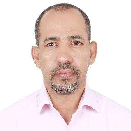 محمد محمود بن أحمد محجوب - باحث وأكاديميّ