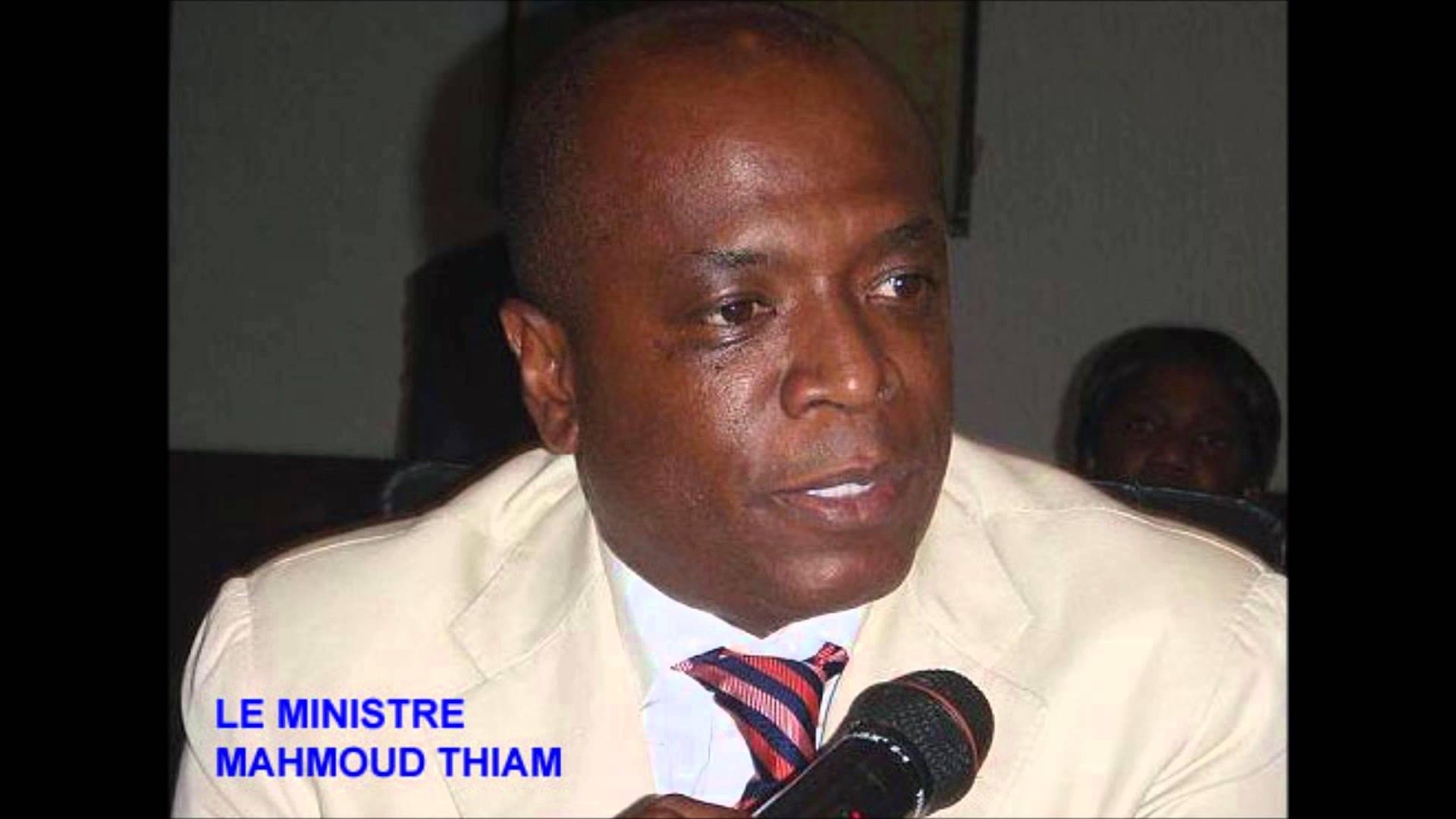 محمود تيام: وزير المعادن الغيني الأسبق.