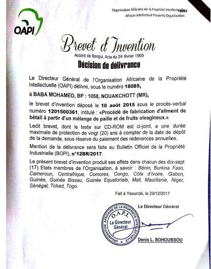 شهادة براءة الاختراع الصادرة عن المنظمة الإفريقية للملكية الفكرية (OAPI)