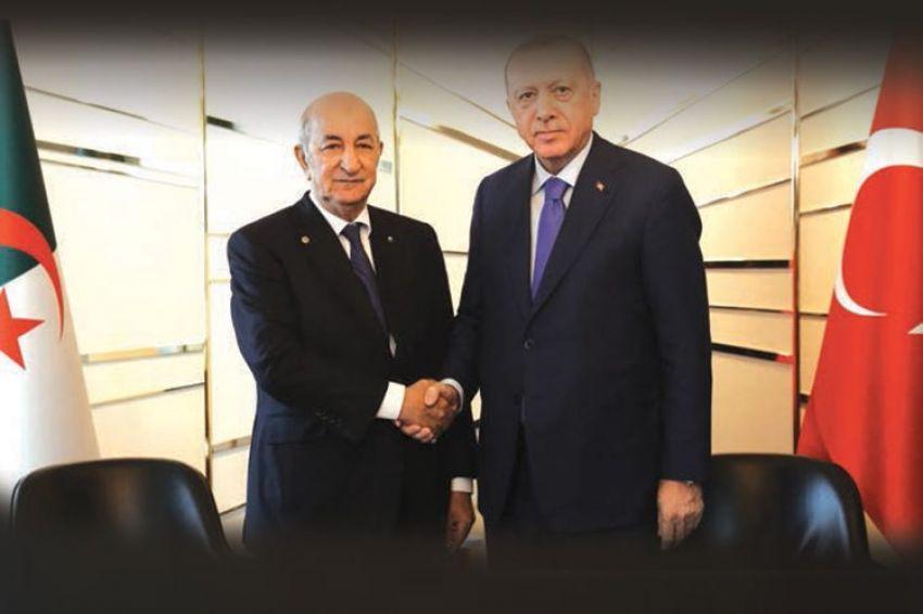 الرئيس التركي رجب طيب أردوغان ونظيره الجزائري عبد المجيد تبون