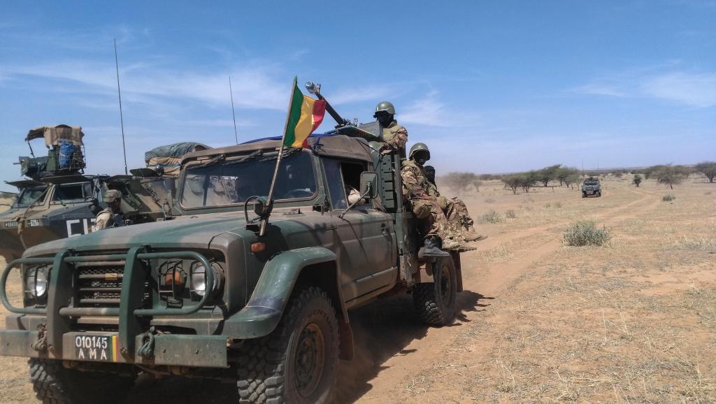 عناصر تابعة القوة المشتركة الإفريقية.