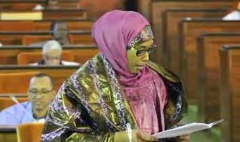 البرلمانية أنيسا با خلال مداخلة سابقة في البرلمان