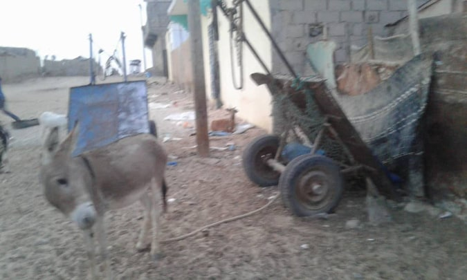 على هذه العربة كان يعمل سيد الخير قبل اجراء العملية له لكنه لم يعد قادرا بعد العملية/ الأخبار
