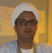 إسماعيل ولد الشيخ سيديا ـ كاتب صحفي