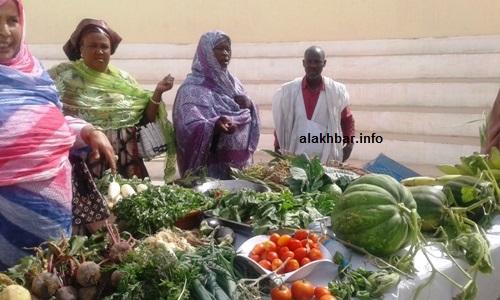 استظهر المزارعون بمنتوجاتهم وناشدوا الحكومة توفير المياه والبذور والقروض لتحقيق الإكتفاء الذاتي/ الأخبار