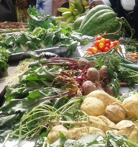 طالب المزارعون بإنشاء سوق محلية وتوفير الأليات والمدخلات الزراعية ودعم قوي مالي/ الأخبار