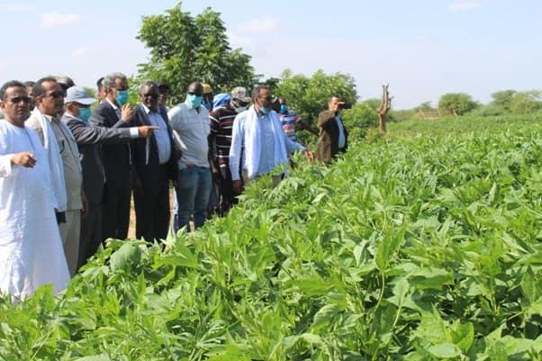 وزير التنمية الريفية خلال زيارة لإحدى المناطق داخل البلاد