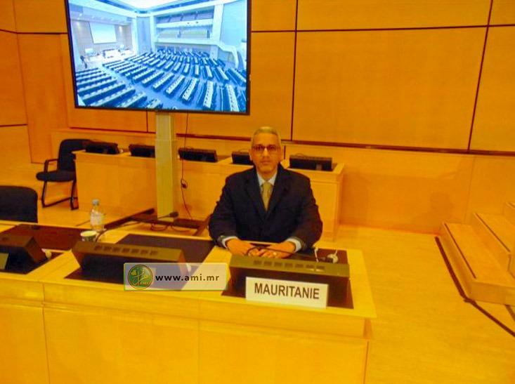 مفوض حقوق الإنسان والعمل الإنساني والعلاقات مع المجتمع المدني، محمد الحسن بوخريص خلال حديثه أمام المجلس (وما)