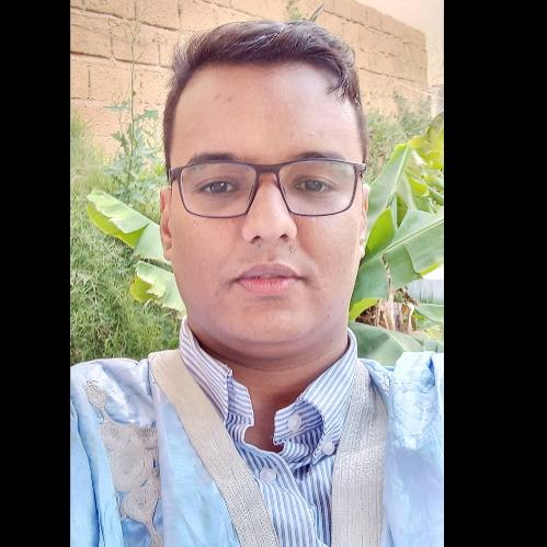 المهندس إسماعيل ولد أحمد