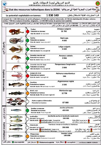 جانب من النشرية الصادرة عن المعهد الموريتاني لبحوث المحيطات والصيد/ الأخبار