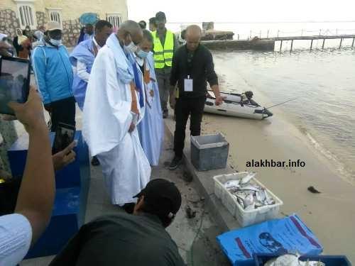 مسؤولون رسميون يستعرضون كميات الأسماك التي تم جلبها/ الأخبار