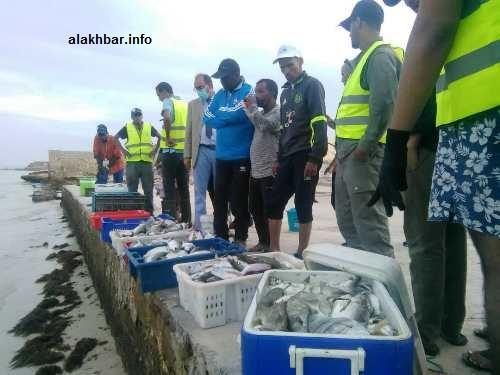 كمية الأسماك التي جلبها المتسابقون من عرض البحر/ الأخبار