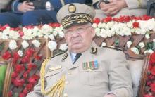 رئيس أركان الجيش الجزائري أحمد قايد صالح ـ (وكالات)