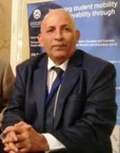 عبد القادر ولد محمد ـ دبلوماسي