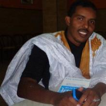 سيد أحمد ولد باب / كاتب موريتاني - Ouldbaba2007@gmail.com