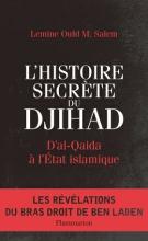 واجهة الإصدار الجديد للكاتب والصحفي الموريتاني الأمين ولد محمد سالم.