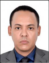 محمد الأمين مامين