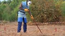 """أحد عمال إزالة الألغام في منطقة """"كازماص"""" جنوب السنغال"""