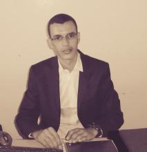 محمد المصطفى الولي