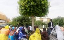 أقارب مدير شركة ENER في محيط قصرالعدل بالعاصمة نواكشوط