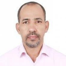 د. محمد محمود أحمد محجوب