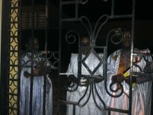 أعضاء المجلس ومعهم نقيب المحامين وهم يتحدثون مع الإعلاميين من وراء قضبان بوابة مجلس الشيوخ (الأخبار)
