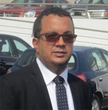 إسماعيل ولد الشيخ سيديا كاتب موريتاني.