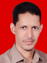 محمد الأمين ولد سيدي مولود – كاتب صحفي ومدون