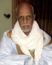 محمد ولد إبراهيم ولد الديـ مؤرخ