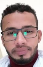 زين العابدين محمد الشيخ سيدي محمد ـ باحث